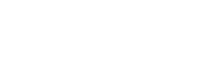 Black Seed Bagels - Hand Rolled, Wood Fired Bagels
